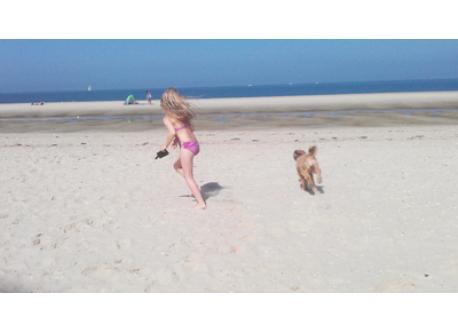 daytrip to Vrouwenpolder Beach, NL