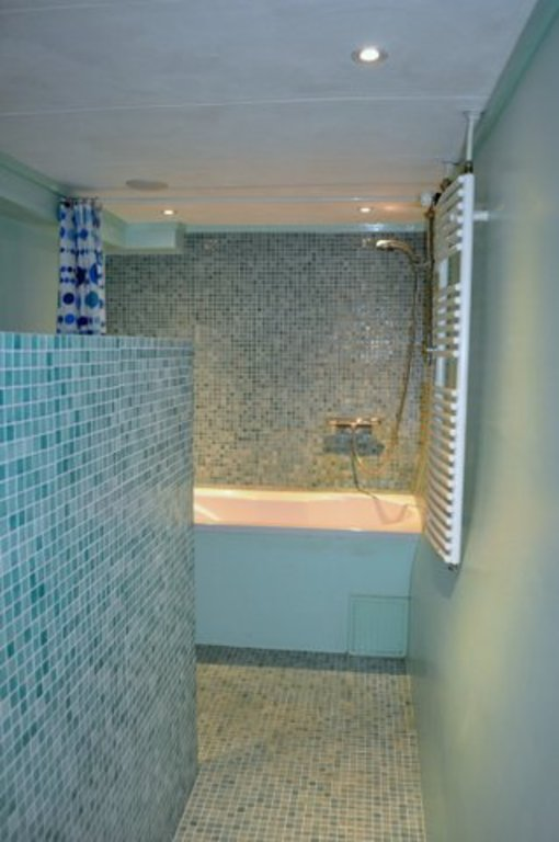 Tub and seperate shower
