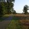 cycling road at 3 km