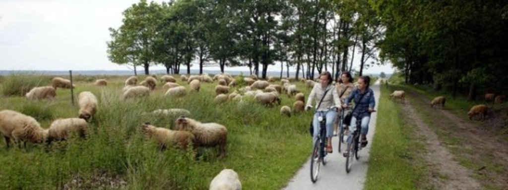 COUNTRYSIDE: Take the bikes and explore the countryside