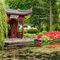 Take a visit to the beatifull botanical gardens in Haren