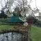 Garden: trampoline/pond
