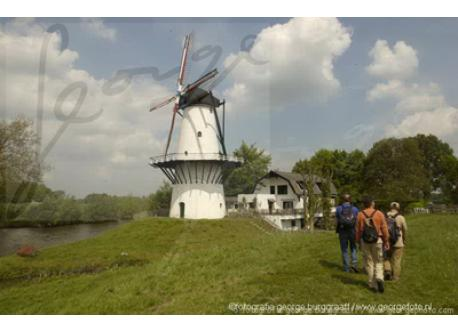 1 of the windmills closeby
