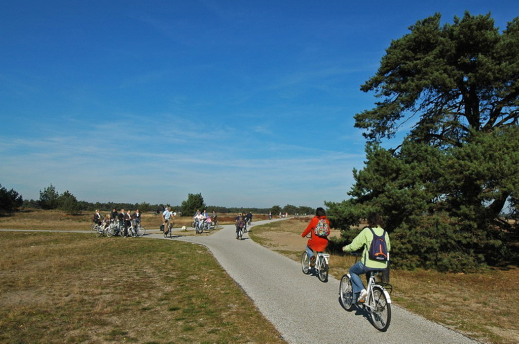 National Park The High Veluwe