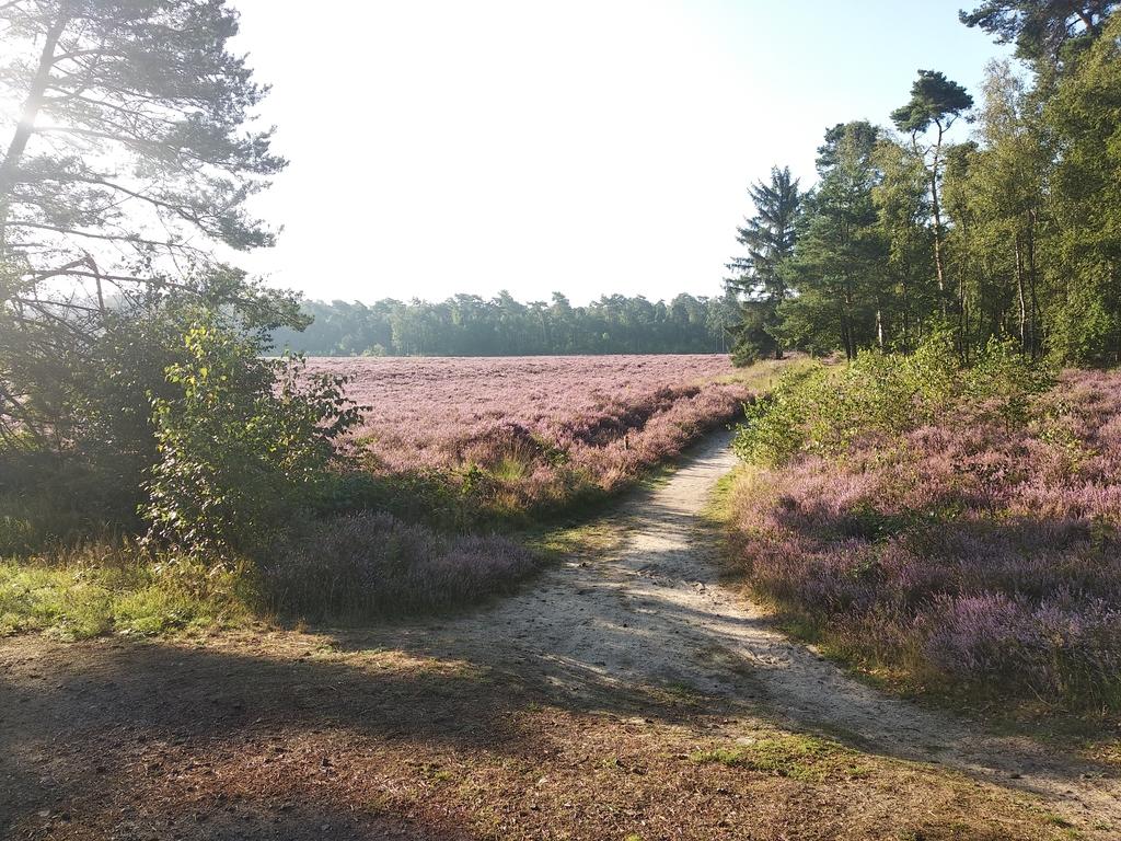 National Park de Utrechtse Heuvelrug (1 km)