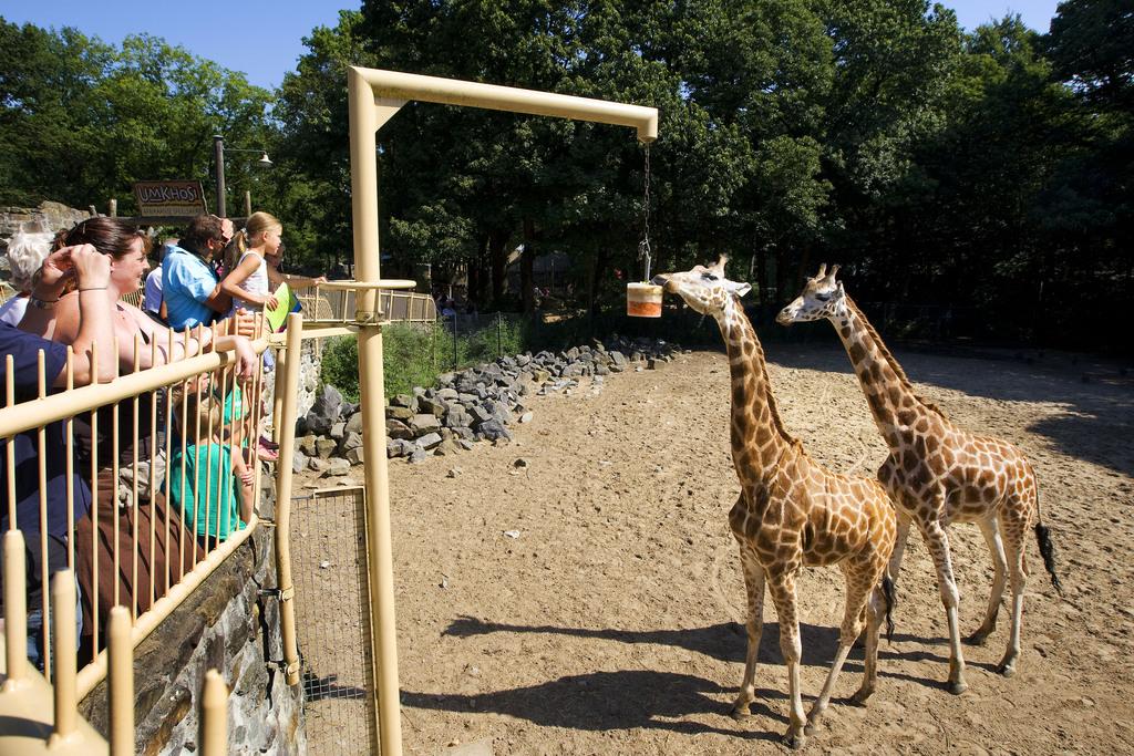 Ouwehands Zoo in 11km