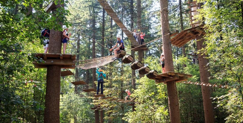 Climbing forest Garderen - 30 min