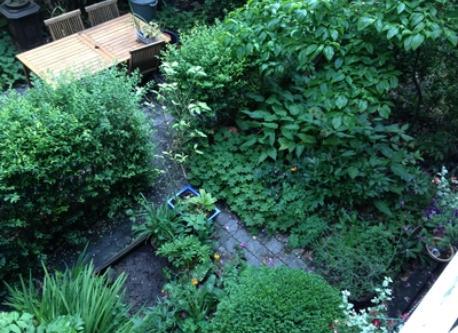 garden with a (dinner) table