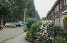 Our street (with free  parkingplaces opposite our house)