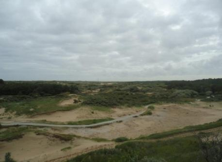 our dunes