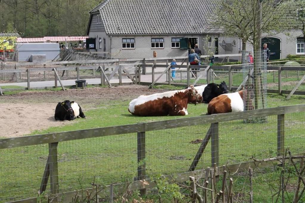The animal farm 'De Wolfslaar'