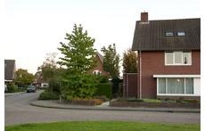 gelegen aan een plantsoen, het huis van mijn vriendin is in Dordrecht aan de Oranjestraat 20, zie google maps.