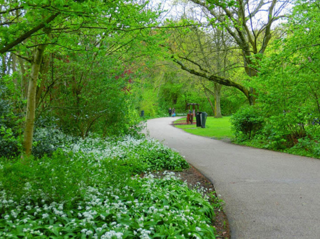 Flevopark (10 min walk) is a English style park with nice paths and relaxing fields