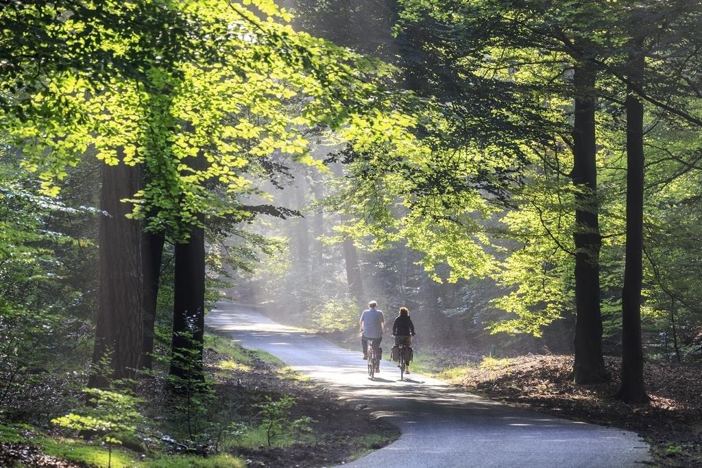 wandelen fietsen 1 km