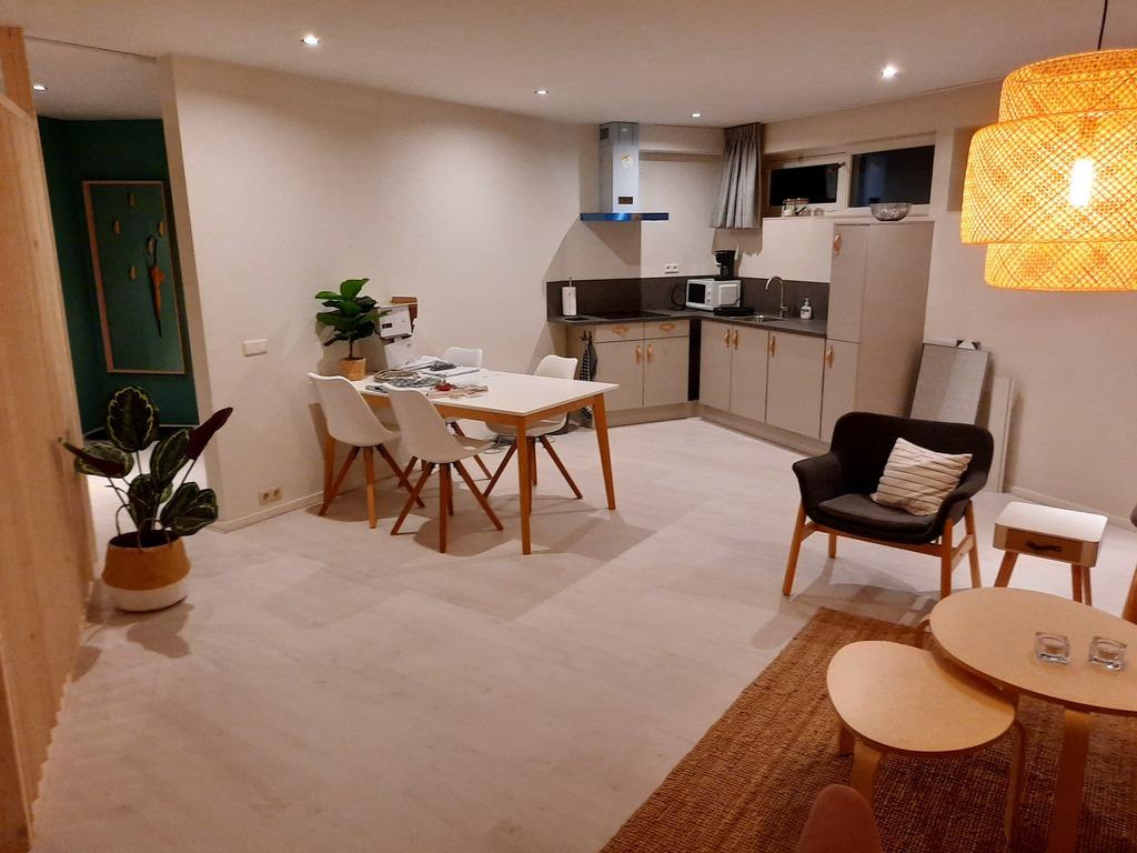 woonkamer benedenhuis / living room, lower floor