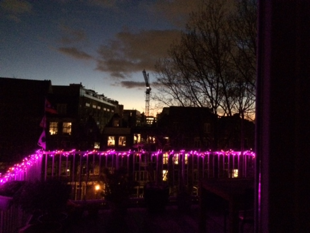 view from terrace by night (purple lights only in winter time)