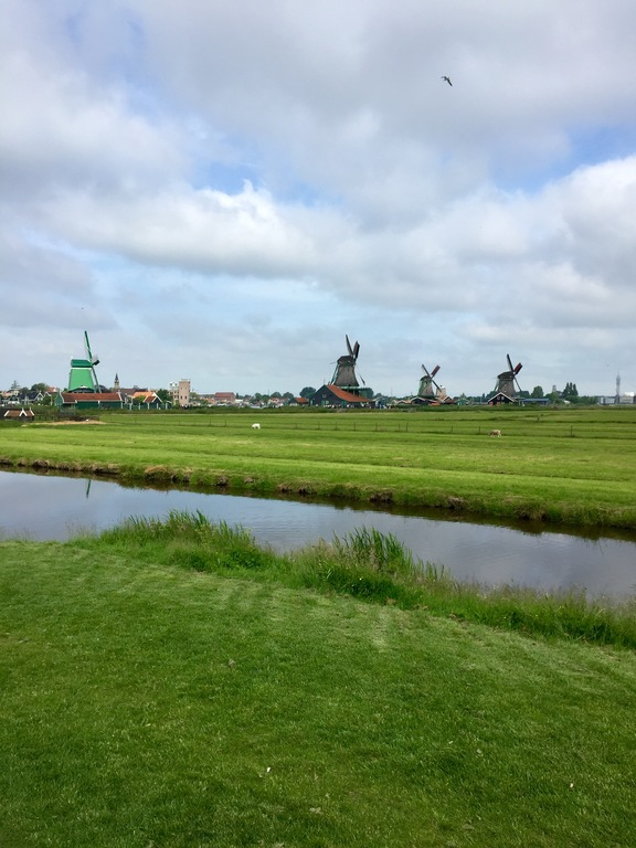 Zaanse Schans. Beautiful, unique and full of windmills (2 hours)