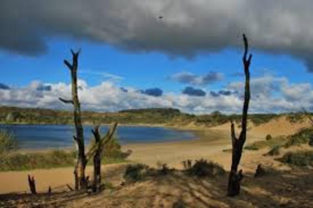National Park Kennemerduinen