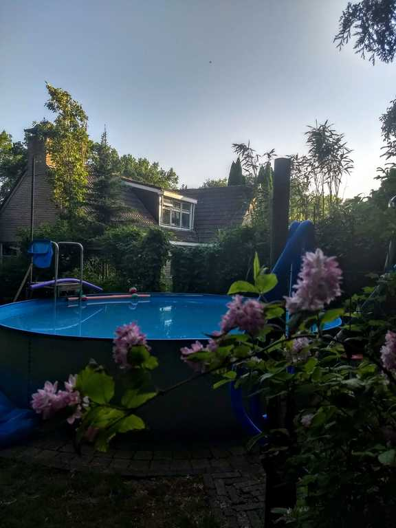 Zwembad achter in de tuin, zeer beschut.