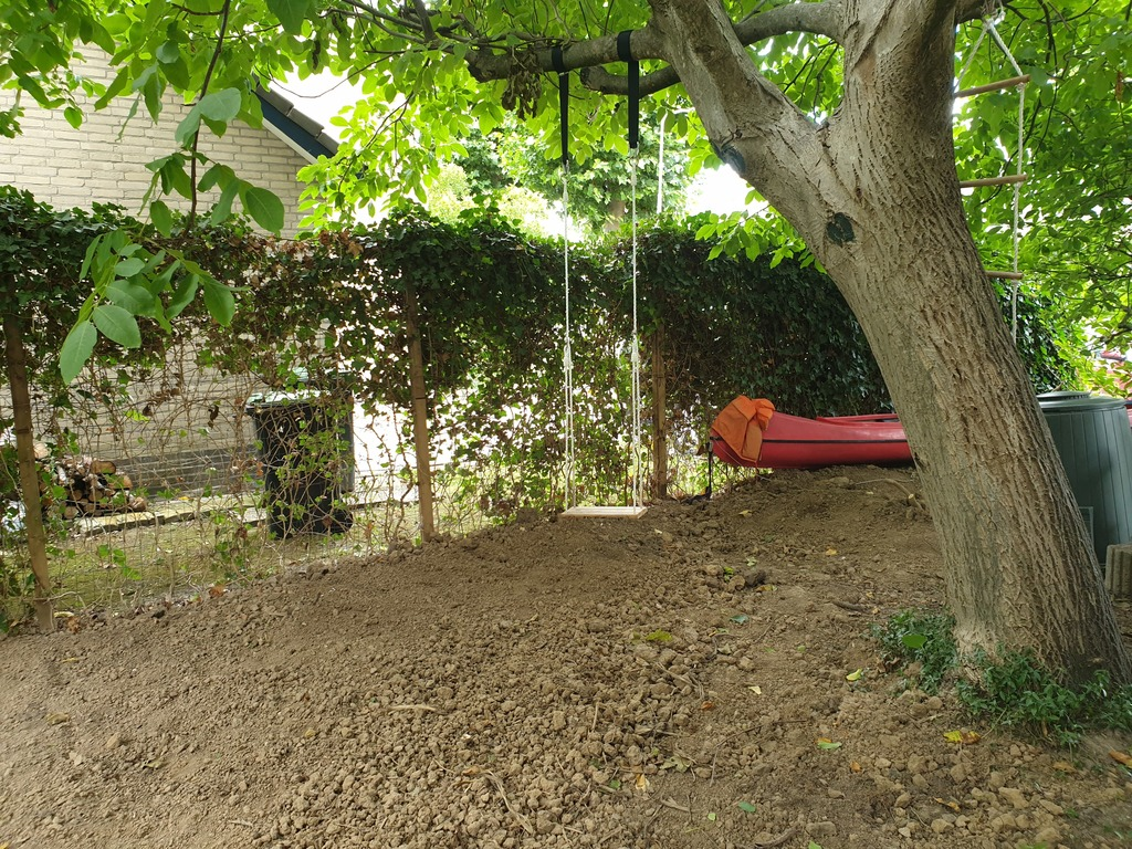 Garden with tree swing