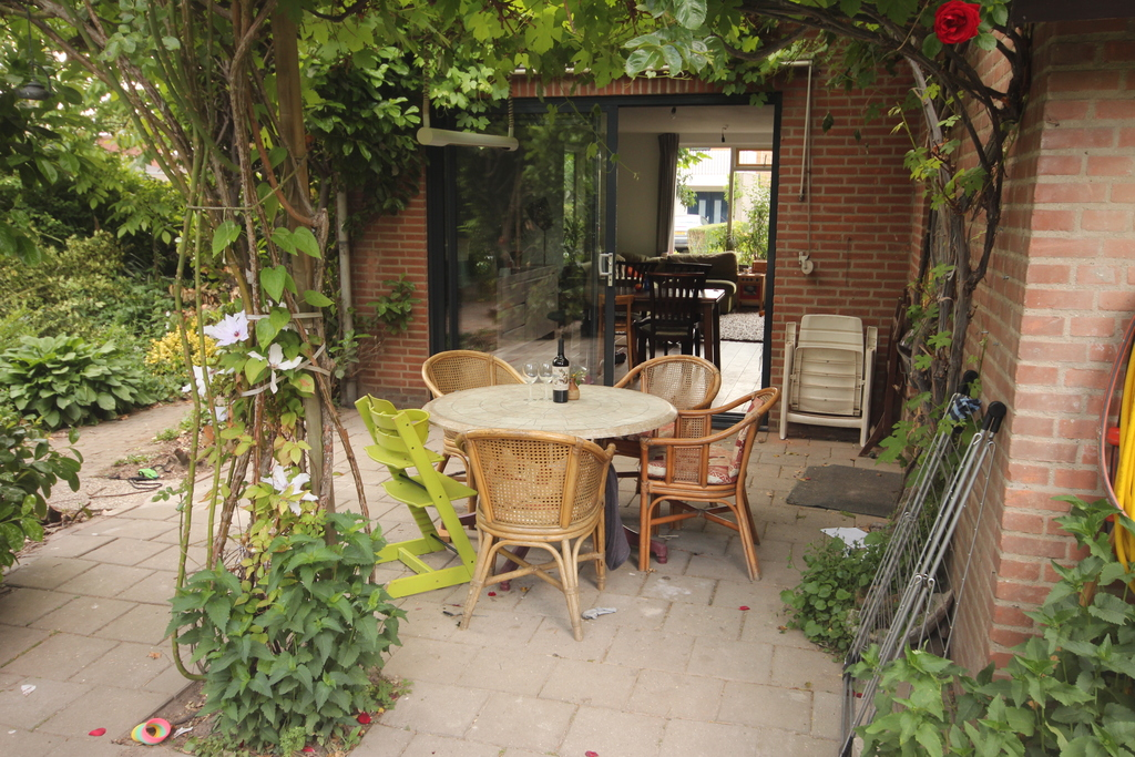 Patio with table so and grape branches, for evening meals in the sun.
