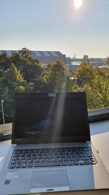 working in the morning sun