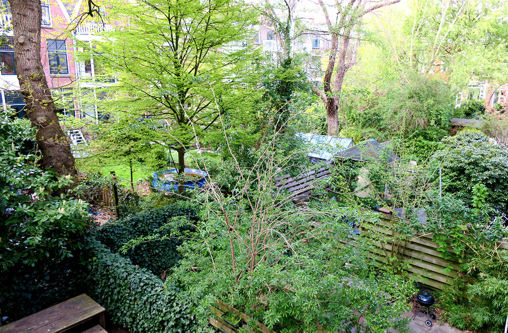 View on our inner courtyard
