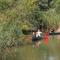The nature reserve De Biesbosch