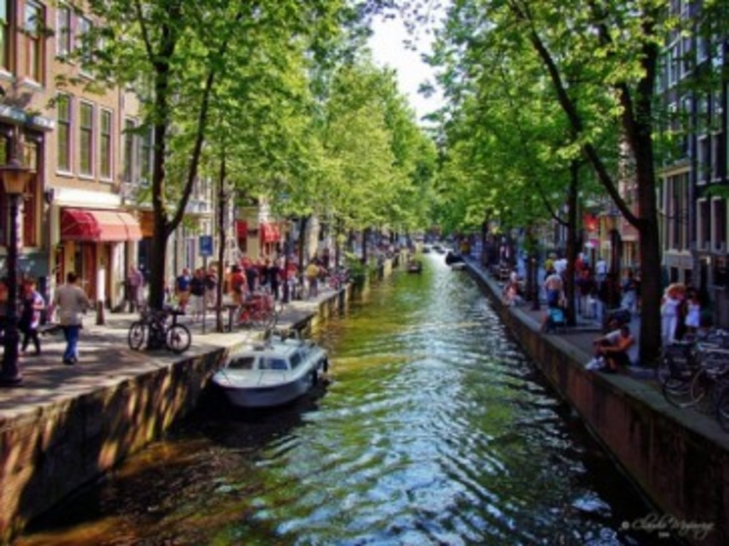 30 minutes to AMSTERDAM by car or train