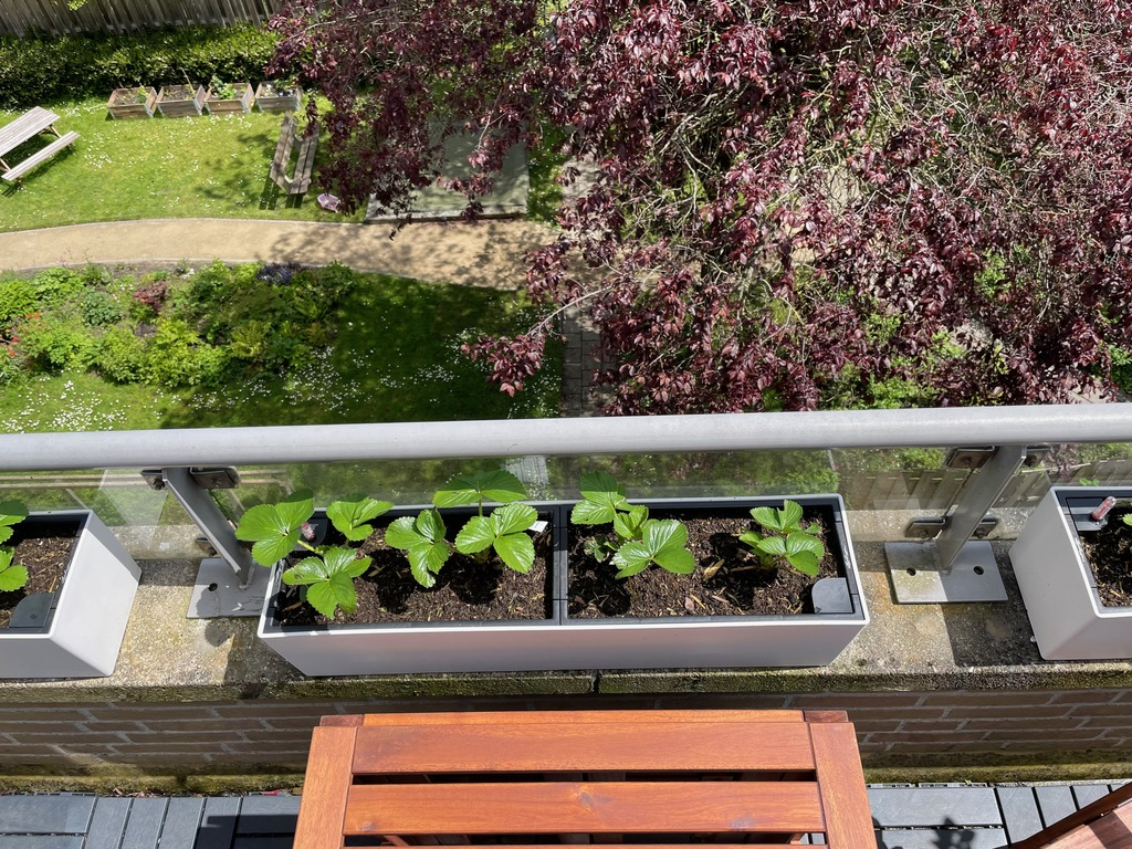 balcony and the shared garden