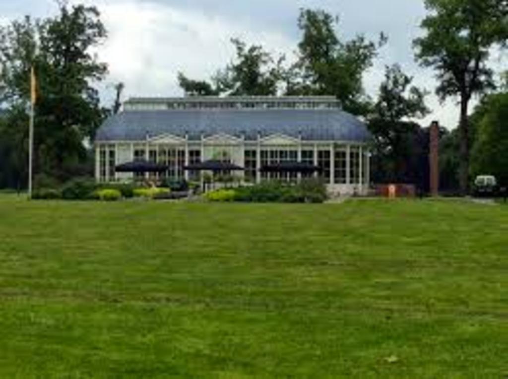 """tea dome in the forest """"de schaffelaar""""."""