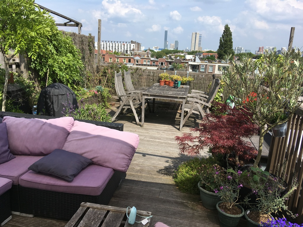 Our private rooftop garden