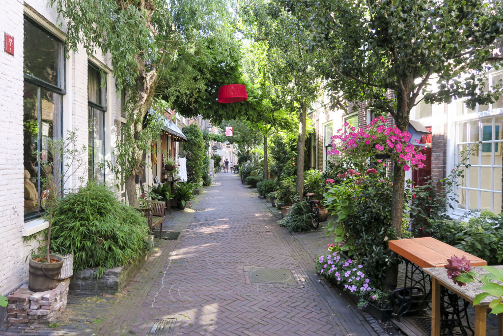 One of the typical streets of Haarlem, with a lot of Green