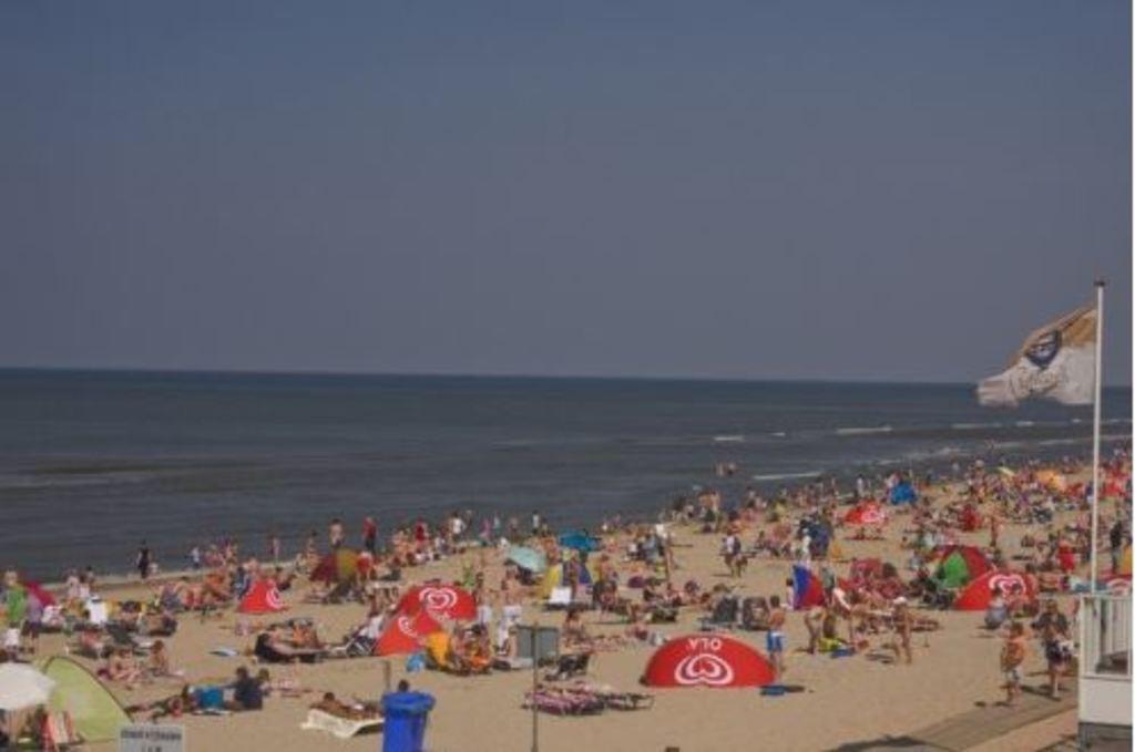 Busy Beach on a hot summer day
