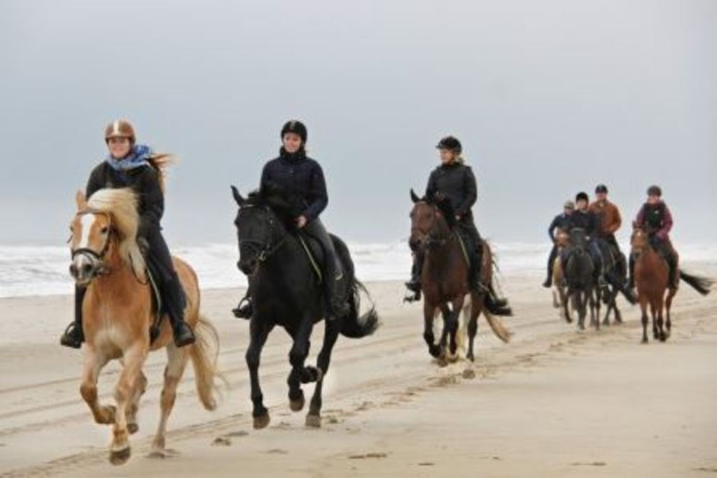 horseriding also possible on the beach, in the summer only allowed before 10 a.m. and after 7 p.m.
