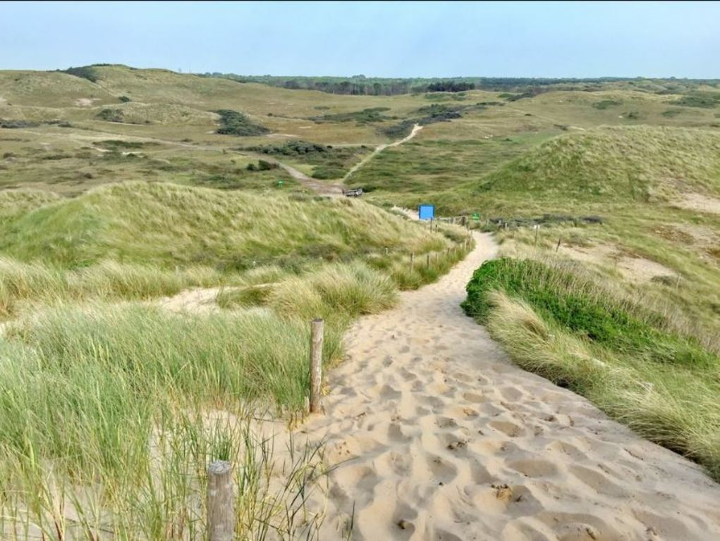 dunes of Castricum for walking and cycling