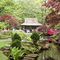 Japanese garden in the Clingendael Estate (15 min. by bike, open only 27 April - 9 June, 9AM to 20PM)