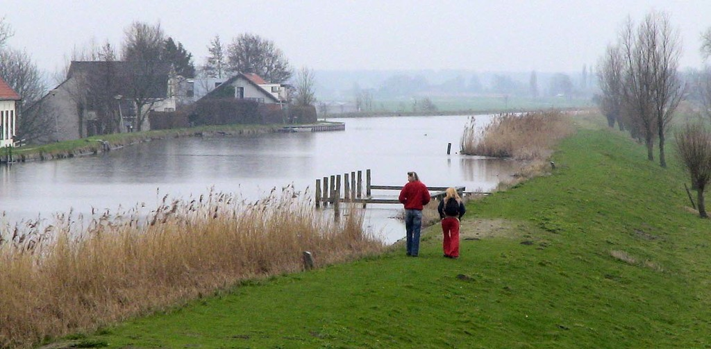 The Delfland Polder