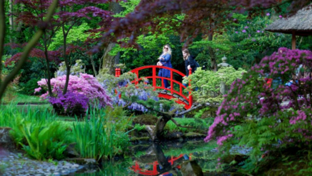 The Japanese garden near our house