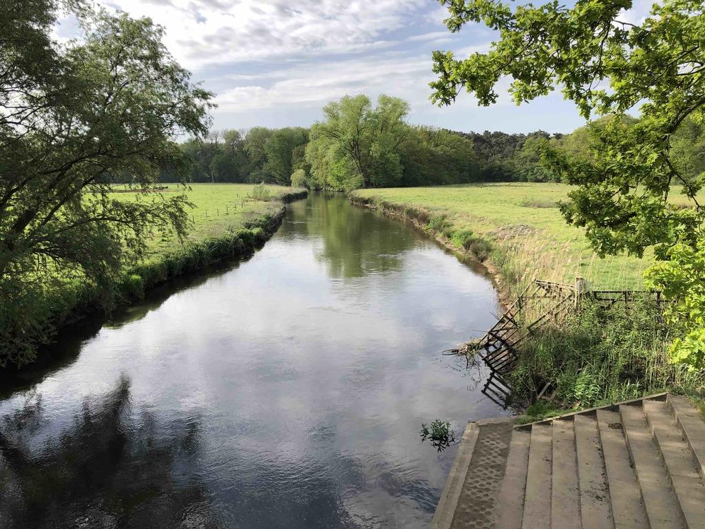 """This is """"de Dommel"""" river"""