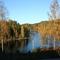 Sunday hike late fall (Mariholtet hiking/biking trail - 5 mins drive from the house)