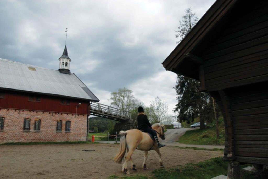Animal farm for kids - 10 mins drive - 20 mins bike