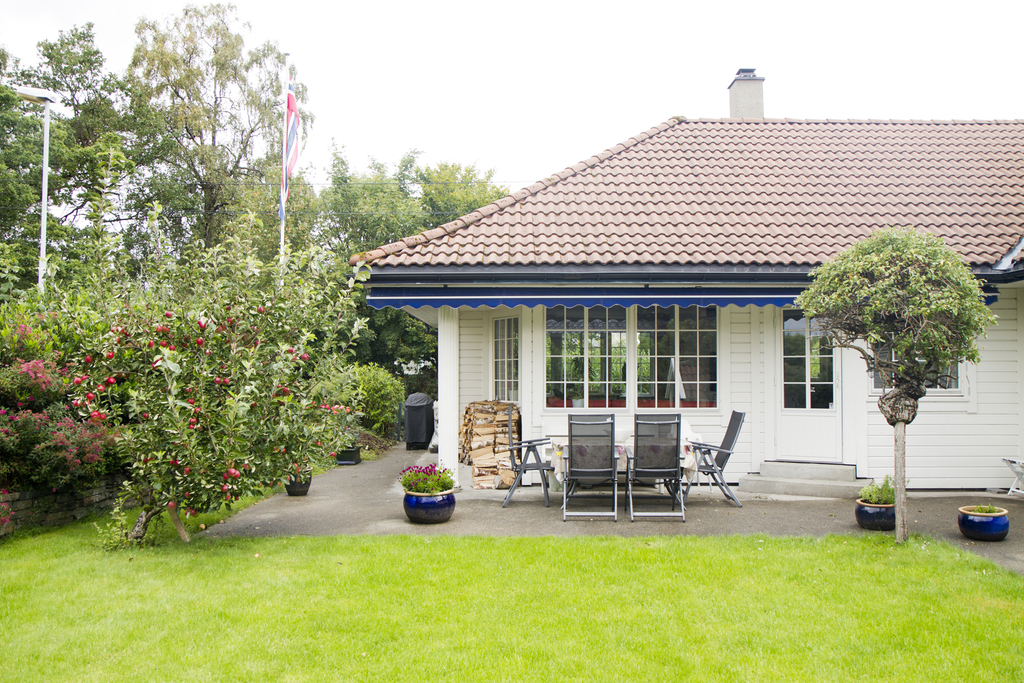 Nice and quiet garden