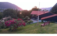 Our house and garden, looking northwards, sunset