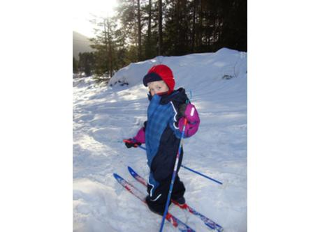 go skiing...