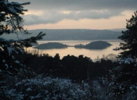 View over the oslo fjord, seen from the forest close to our house.