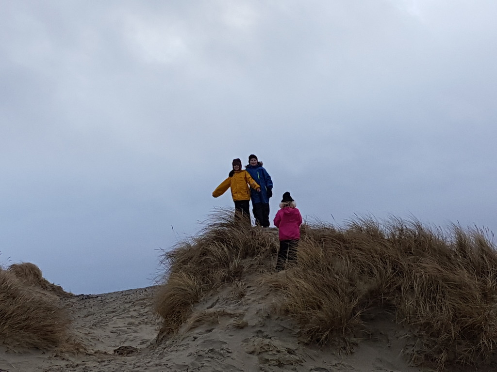 Sand dunes nearby at wintertime