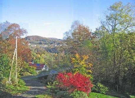 Close to nature and to public transport (7 min walk, 20 min to Bergen)