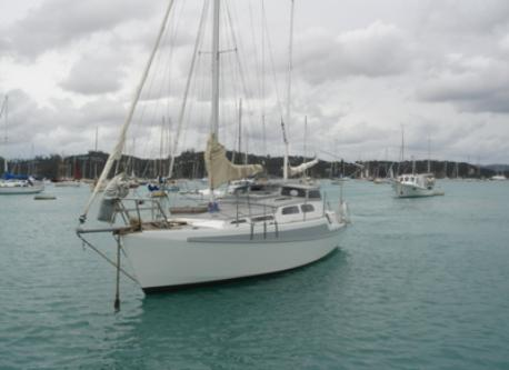 Sailing and charters organised locally or Bay of Islands
