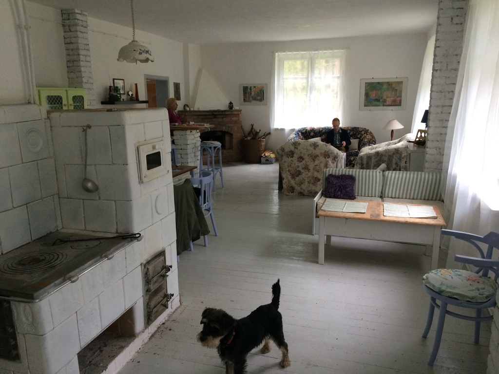 Our forest cottage - house interior